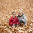 Two boys in autumn park — Stock Photo