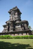 Candi singosari Tapınağı — Stok fotoğraf