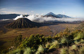 Bromo, an active volcano in west Java island, Indonesia — Stock Photo