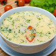 Cream soup — Stock Photo #12490565