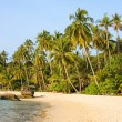 Beautiful tropical beach — Foto Stock
