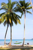 Sea, beach, jungle and hammock - vacation background — Foto Stock