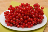 Mossberry — Stock Photo