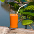 Glass of fresh carrot juice — Stock Photo