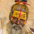 Stock Photo: Indian sadhu (holy man)