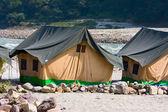 Campo presso il fiume gange — Foto Stock