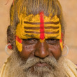 Indian sadhu (holy man) - Stock Photo