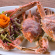 Cooked crab — Photo #17877395