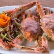 Cooked crab — Stock Photo #17877395