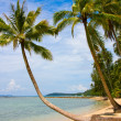 Serenity Shore Exotic Paradise — Stock Photo