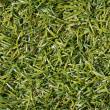 Artificial grass — Stock Photo #18000727
