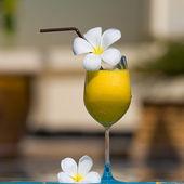 Tropikalny koktajl — Zdjęcie stockowe