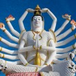 Statue of Shiva — Stock Photo #19047567
