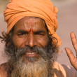Indian Sadhu Welcomes - Stock Photo