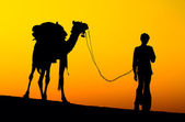 Silhouette of a man and camel at sunset — Foto de Stock