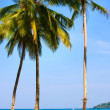 Beautiful tropical beach , Thailand — Stock Photo #19205115