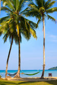 Beautiful tropical beach , Thailand — Stock Photo