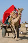 PUSHKAR, INDIA - NOVEMBER 18: Decorated camel and his owner are going to take part at annual pushkar camel mela (fair) on November 18,2012 in Pushkar,Rajasthan,India — Stock Photo