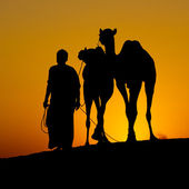 Silhouette of a man and two camels at sunset, India — Stock Photo