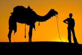 Silhouette of a man and camel at sunset, India — Stock Photo