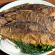 Fried fish crucian in plate — Stock Photo #24999927