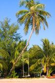 Beach , Thailand . — Stock Photo