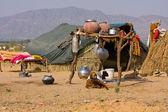 одинокий дом в пустыне, индия — Стоковое фото