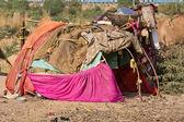 The poor area in the desert near Pushkar, India — Stock Photo