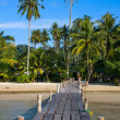 Beautiful tropical beach — Stock Photo #26399291