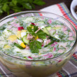 Vegetable soup ( okroshka ) — Stock Photo #29523137