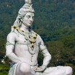 Shiva statue in Rishikesh, India — Stock Photo #29741791