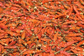 Background of closeup red hot peppers — Stock Photo