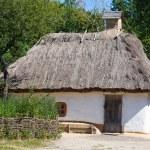 Wooden houses taken in park in summer in Pirogovo museum, Kiev, Ukraine — Stock Photo #30202637