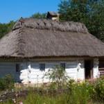 Wooden houses taken in park in summer in Pirogovo museum, Kiev, Ukraine — Stock Photo #30202651