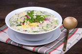 Vegetable soup ( okroshka ) — 图库照片