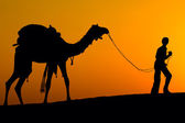 Silhouette di un uomo e cammello al tramonto nel deserto, jaisalmer - india — Foto Stock