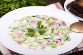 Vegetable soup ( okroshka ) — Stock Photo