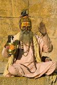 Indian sadhu (holy man) — Stockfoto