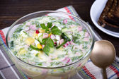 Vegetable soup ( okroshka ) — Stock fotografie