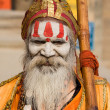 Stock Photo: Indisadhu (holy man). Varanasi, Uttar Pradesh, India.