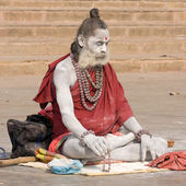 Indian sadhu (holy man). Varanasi, Uttar Pradesh, India. — Foto de Stock