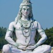 Shiva statue in Rishikesh, India — Stock Photo #33860009