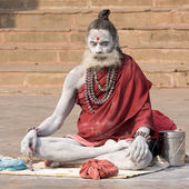 Indian sadhu (holy man). Varanasi, Uttar Pradesh, India. — Stock fotografie