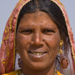 Indian woman — Stock Photo #35474101