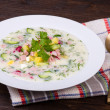 Russian okroshka with yogurt and vegetables, food — Stock Photo