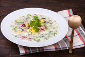 Rus okroshka yoğurt ve sebze, yemek — Stok fotoğraf