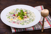 Russian okroshka with yogurt and vegetables, food — Zdjęcie stockowe