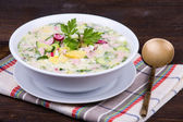 Russian okroshka with yogurt and vegetables, food — Stockfoto