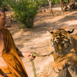 Stock Photo: Buddhist monk with bengal tiger