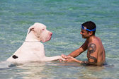 Man with the Great Dane in the sea — Stock Photo